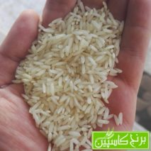 برنج طارم کشت دوم