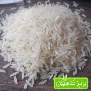 برنج فجر