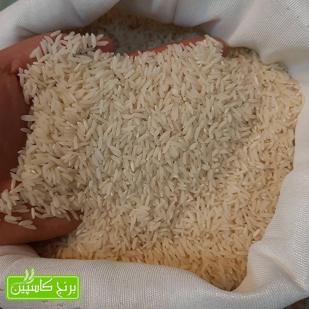 برنج صدری هاشمی آستانه اشرفیه