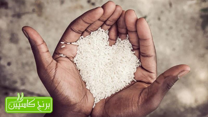 راه تشخیص برنج تازه از کهنه